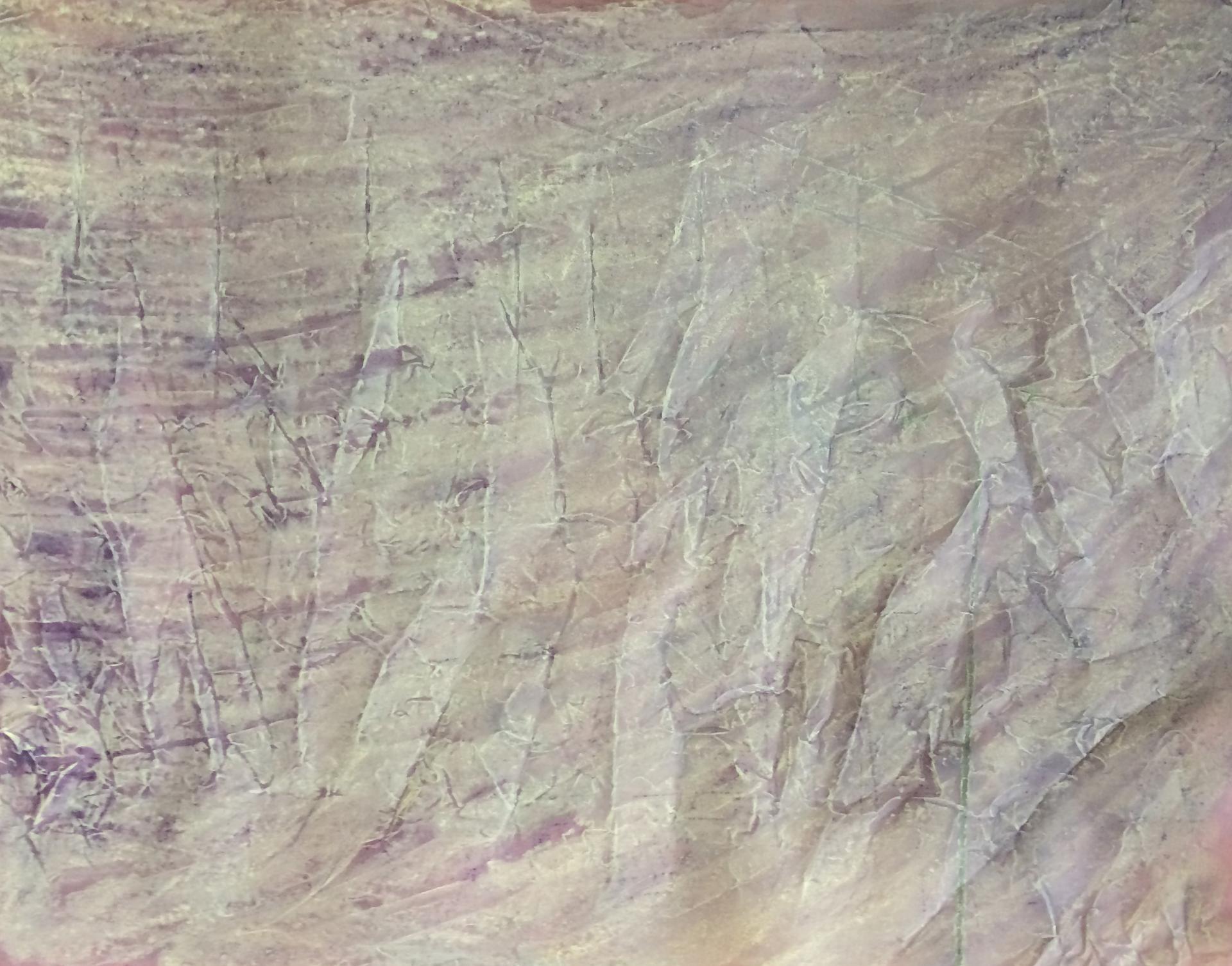 20140430 pastels secs sur papier calque 50x65 cm